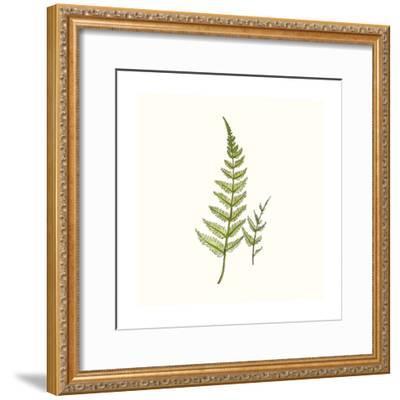 Watercolor Forest Ferns-Natasha Marie-Framed Premium Giclee Print