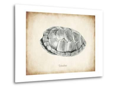 Testudines Shell A-THE Studio-Metal Print