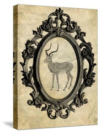 Framed Gazelle-THE Studio-Stretched Canvas Print