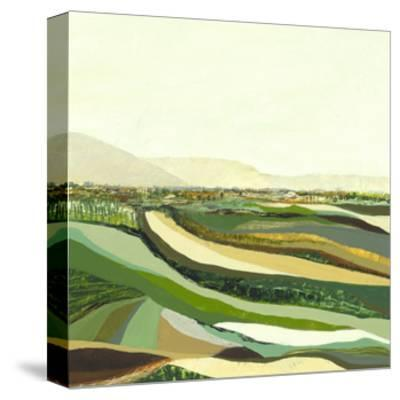 Topographs 5-Kyle Goderwis-Stretched Canvas Print
