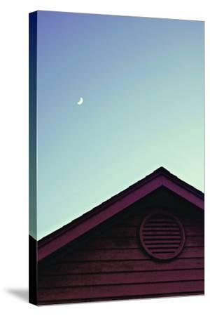 Moonlight-Libertad Leal-Stretched Canvas Print