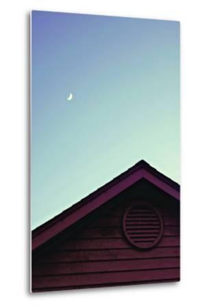 Moonlight-Libertad Leal-Metal Print