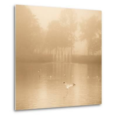 Golden Lake in Fog-Joanna Pechmann-Metal Print