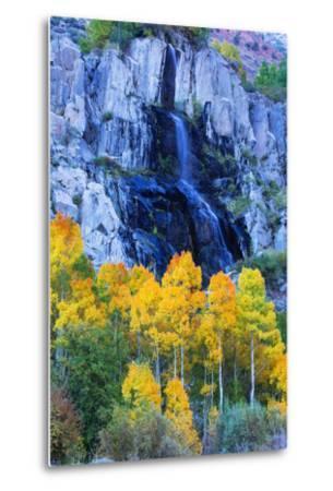 Autumn Color Waterfall Bishop Creek Canyon Eastern Sierras California-Vincent James-Metal Print