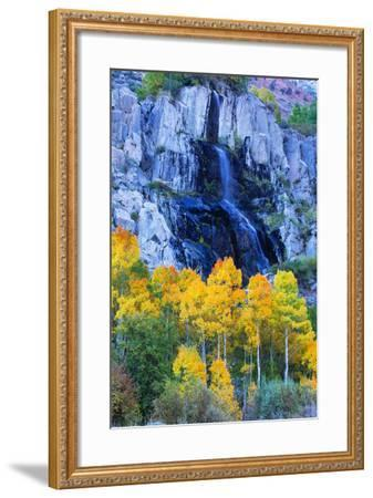 Autumn Color Waterfall Bishop Creek Canyon Eastern Sierras California-Vincent James-Framed Photographic Print
