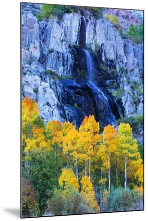 Autumn Color Waterfall Bishop Creek Canyon Eastern Sierras California-Vincent James-Mounted Photographic Print