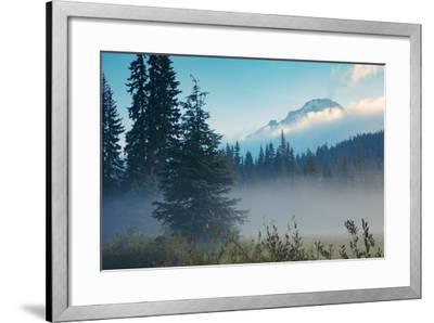 Misty Mount Hood Meadow in Spring, Oregon Wilderness-Vincent James-Framed Photographic Print
