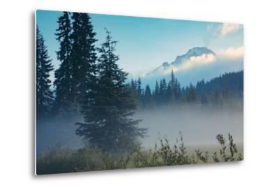Misty Mount Hood Meadow in Spring, Oregon Wilderness-Vincent James-Metal Print