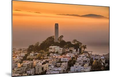 Coit Tower and Golden Fog Flow, San Francisco, Cityscape, Urban View-Vincent James-Mounted Photographic Print