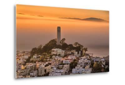 Coit Tower and Golden Fog Flow, San Francisco, Cityscape, Urban View-Vincent James-Metal Print