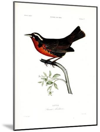 Loyca, Atlas de La Historia Física y Política de Chile, 1854-Claudio Gay-Mounted Premium Giclee Print