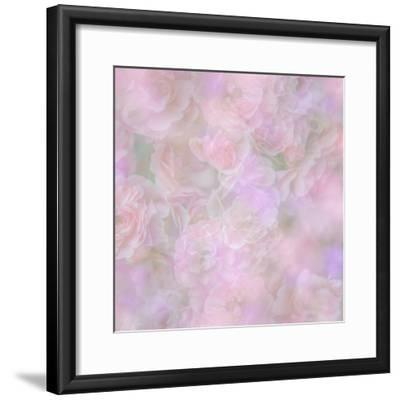 English Rose II-Doug Chinnery-Framed Photographic Print