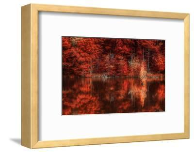 Gimme Some Soul-Philippe Sainte-Laudy-Framed Photographic Print