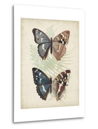 Butterflies and Ferns IV-Vision Studio-Metal Print