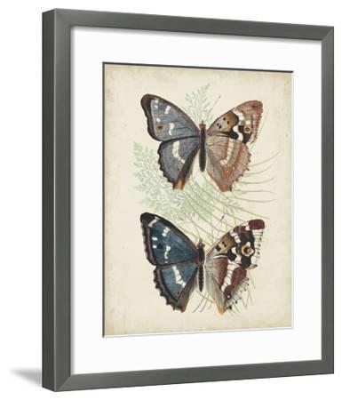 Butterflies and Ferns IV-Vision Studio-Framed Art Print