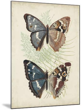 Butterflies and Ferns IV-Vision Studio-Mounted Art Print