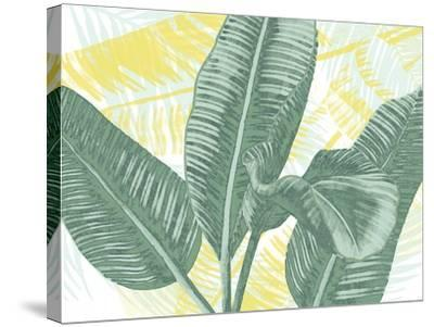 Illustrated Palms II-Grace Popp-Stretched Canvas Print