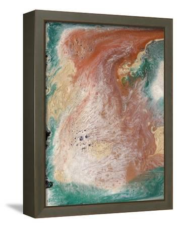 Coralline I-Alicia Ludwig-Framed Stretched Canvas Print