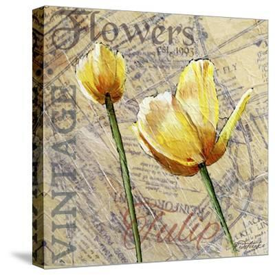 Vintage Flower Collage III-Redstreake-Stretched Canvas Print