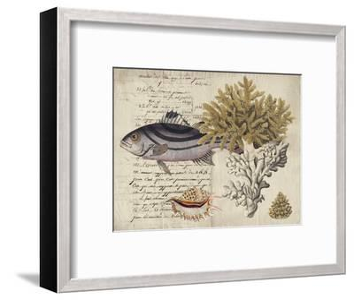 Sealife Journal III-Vision Studio-Framed Art Print