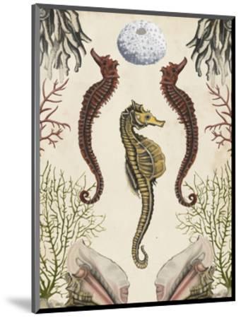 Antiquarian Menagerie - Seahorse-Naomi McCavitt-Mounted Art Print