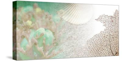 Serene Photo Collage II-Irena Orlov-Stretched Canvas Print