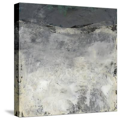 Pensive Neutrals II-Karen Suderman-Stretched Canvas Print