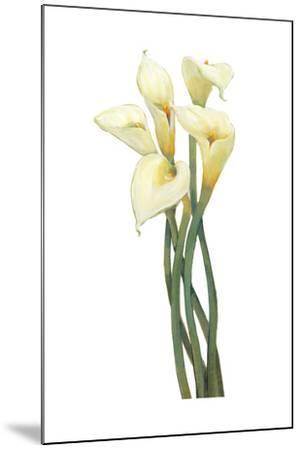 Callas on Silver I-Tim OToole-Mounted Art Print