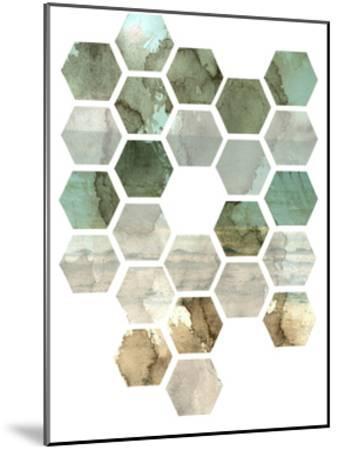 Hexocollage II-Pam Ilosky-Mounted Art Print
