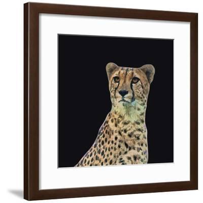 Portrait of Cheetah Sitting, Vector Illustration-Jan Fidler-Framed Photographic Print