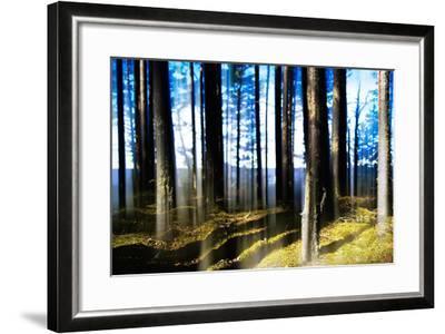 Forest Lake Horizon Light Vertical Abstraction-Nickolay Loginov-Framed Photographic Print