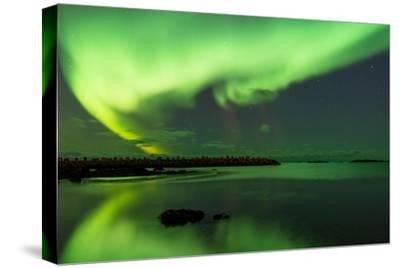 Northern Lights Near Eggum, Aurora Borealis, Eggum, Lofoten, Norway-Sonja Jordan-Stretched Canvas Print