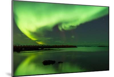 Northern Lights Near Eggum, Aurora Borealis, Eggum, Lofoten, Norway-Sonja Jordan-Mounted Photographic Print