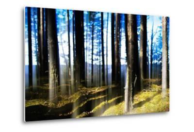 Forest Lake Horizon Light Vertical Abstraction-Nickolay Loginov-Metal Print