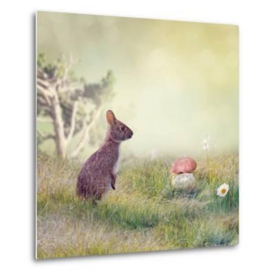 Wild Rabbit Standing Up in the Grass-Svetlana Foote-Metal Print