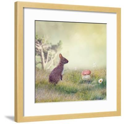 Wild Rabbit Standing Up in the Grass-Svetlana Foote-Framed Photographic Print