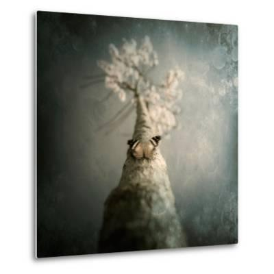 A Small Butterfly Sitting on a Tree with Overlaid Textures-Trigger Image-Metal Print