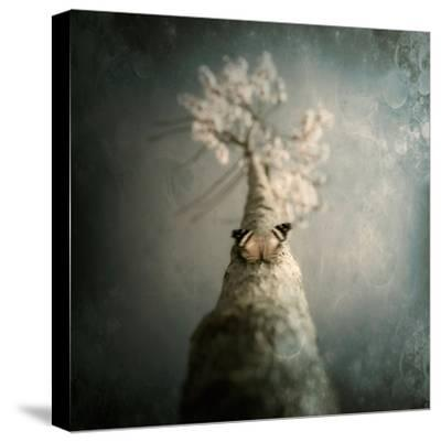 A Small Butterfly Sitting on a Tree with Overlaid Textures-Trigger Image-Stretched Canvas Print