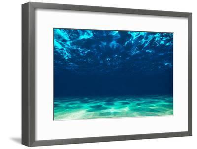Ocean Bottom, View Beneath Surface-Tomislav Zivkovic-Framed Photographic Print