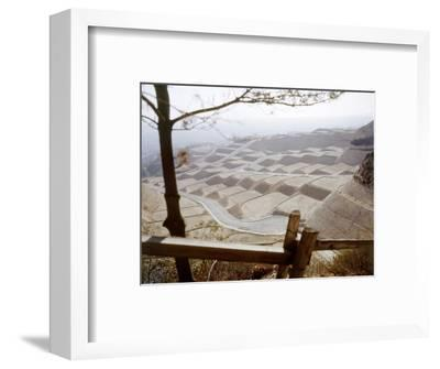 Hollywood Hills Leveled Plots of Land Ready for Private Homes, Los Angeles, California 1959-Ralph Crane-Framed Photographic Print