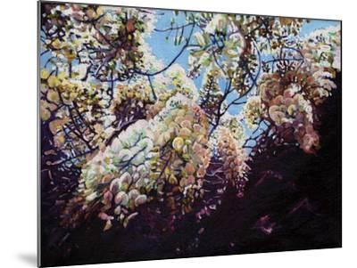 White Wisteria, 2012-Helen White-Mounted Giclee Print