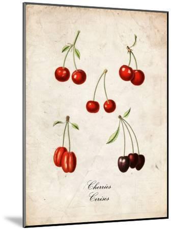 Cherries--Mounted Art Print