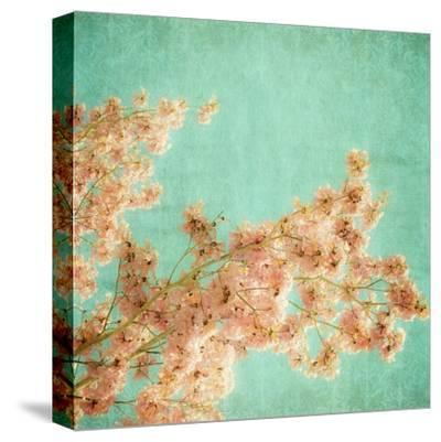 Fleurish I-Ryan Hartson-Weddle-Stretched Canvas Print