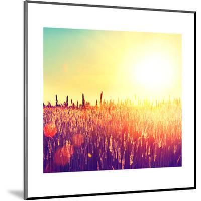 Field, Beautiful Nature Sunset Landscape-Subbotina Anna-Mounted Art Print