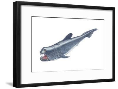 Dinichthys, Fishlike Animal, Fossil, Fishes-Encyclopaedia Britannica-Framed Art Print