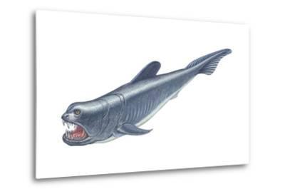 Dinichthys, Fishlike Animal, Fossil, Fishes-Encyclopaedia Britannica-Metal Print