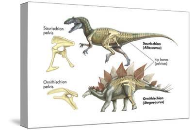 Dinosaur-Encyclopaedia Britannica-Stretched Canvas Print