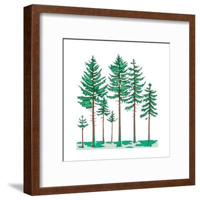 Vegetation Profile of a Boreal Forest. Biosphere, Earth Sciences-Encyclopaedia Britannica-Framed Art Print