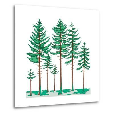 Vegetation Profile of a Boreal Forest. Biosphere, Earth Sciences-Encyclopaedia Britannica-Metal Print