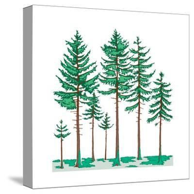 Vegetation Profile of a Boreal Forest. Biosphere, Earth Sciences-Encyclopaedia Britannica-Stretched Canvas Print
